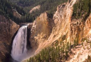 844 Yellowstone Lower Falls.jpg